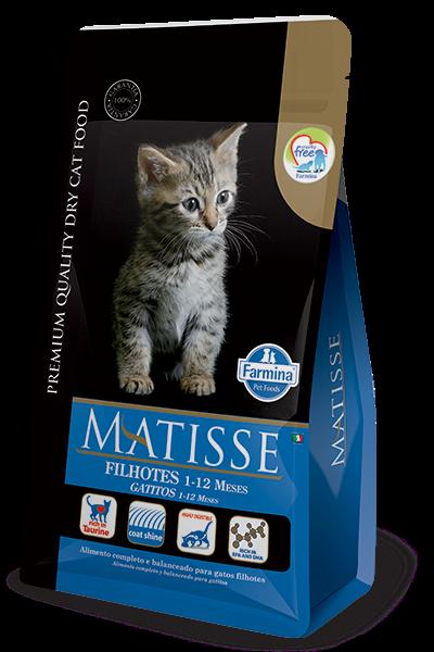 Matisse Filhotes